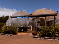 With a  climate that allows the use of poly-tunnels as  cafes !