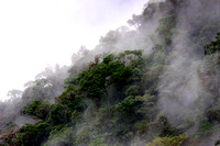 Cloud forest..and above  the cloud was......